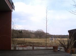 20080227001.jpg