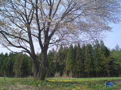 20080430002.jpg