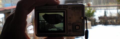20090102001.jpg